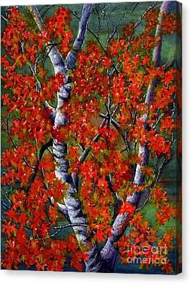 Paper White Birch Reflections Canvas Print