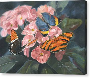 Papillons Canvas Print by Lucie Bilodeau