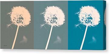 Parachute Balls Canvas Print