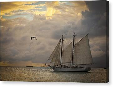 Paradise Calling Canvas Print by Scott Meyer