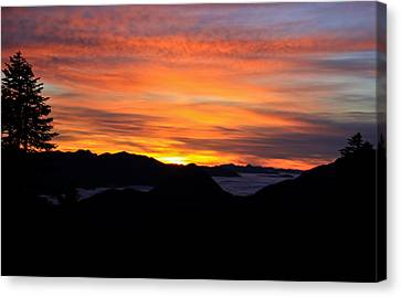 Canvas Print featuring the photograph Paradise by David Stine