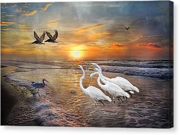 Paradise Dreamland  Canvas Print by Betsy Knapp