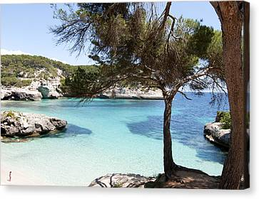 Paradise In Minorca Is Called Cala Mitjana Beach Where Sand Is Almost White And Sea Is A Deep Blue  Canvas Print by Pedro Cardona