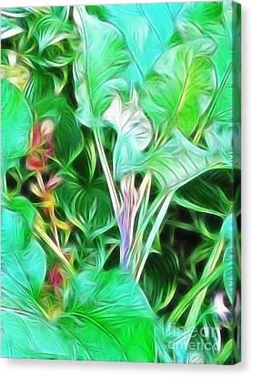 Paradise Canvas Print by Kathie McCurdy