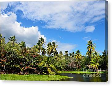 Canvas Print featuring the photograph Paradise Lagoon by David Lawson