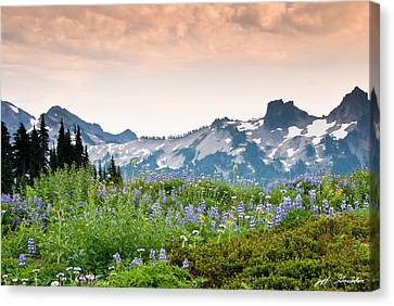 Canvas Print featuring the photograph Paradise Meadows And The Tatoosh Range by Jeff Goulden