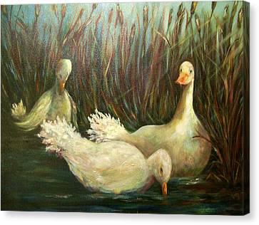 Paradise Pond,ducks  Canvas Print