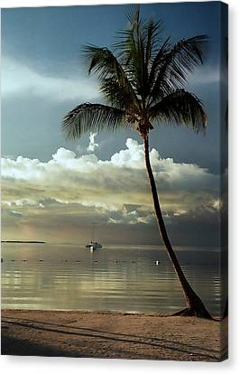 Paradise Reflections.. Canvas Print by Al  Swasey