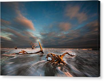 Canvas Print featuring the photograph Paradise  by RC Pics