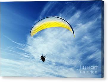 Paraglider Canvas Print by Jelena Jovanovic