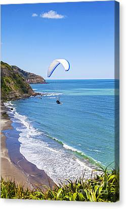 Auckland Canvas Print - Paragliding At Maori Bay Auckland by Colin and Linda McKie