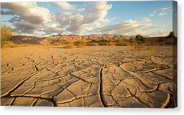Parched Ground In A Desert Canvas Print by Photostock-israel