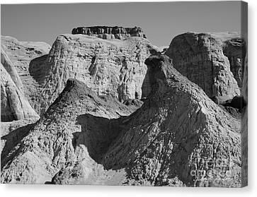 Rimrock Canvas Print - Paria Utah IIi by Dave Gordon