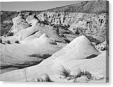 Rimrock Canvas Print - Paria Utah Iv by Dave Gordon