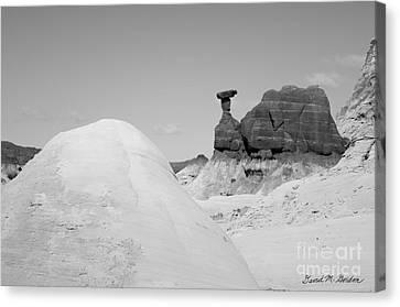 Rimrock Canvas Print - Paria Utah V by Dave Gordon