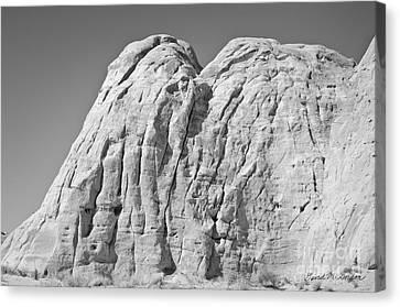 Paria Utah X Canvas Print by Dave Gordon
