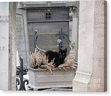 Paris Cemetery Cat - Le Chats Noir - Pere Lachaise - Black Cat On Grave Cemetery Art Canvas Print by Kathy Fornal