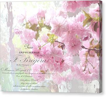Paris Dreamy Pink Blossoms Tree - Paris Cherry Blossoms With French Script Letter Writing Canvas Print