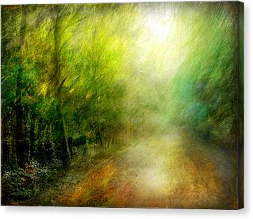 Canvas Print featuring the photograph Park #7. The Colors Of Silence by Alfredo Gonzalez