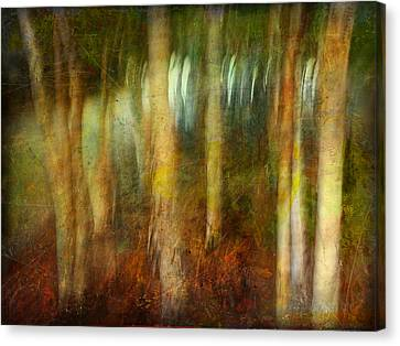 Canvas Print featuring the photograph Park #8. Memory Of Trees by Alfredo Gonzalez