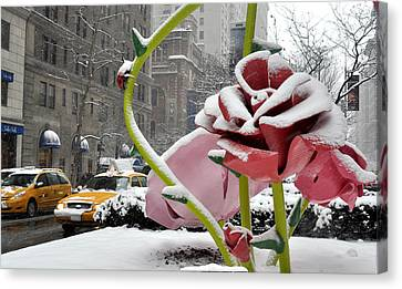 Park Avenue Rose In The Snow Canvas Print by Diane Lent