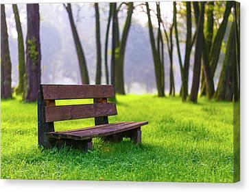 Park Benches Canvas Print - Park Bench And Green Grass by Wladimir Bulgar