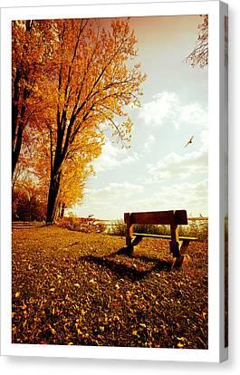 Park Bench Canvas Print