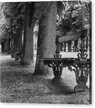 Park Benches Canvas Print - Park Bench In Paris by Georgia Fowler