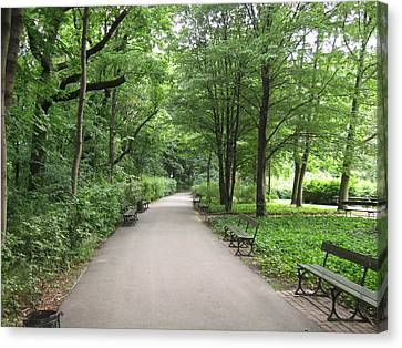 Park Bench Poland Canvas Print