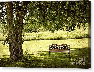 Park Benches Canvas Print - Park Bench Under Tree by Elena Elisseeva