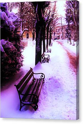 Park Benches In Snow Canvas Print by Nina Ficur Feenan
