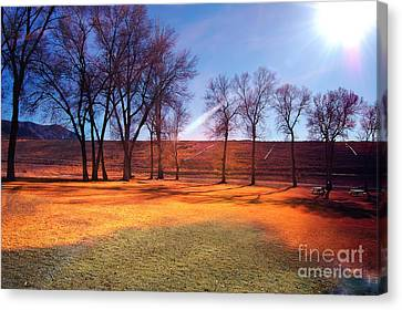 Park In Mcgill Near Ely Nv In The Evening Hours Canvas Print by Gunter Nezhoda