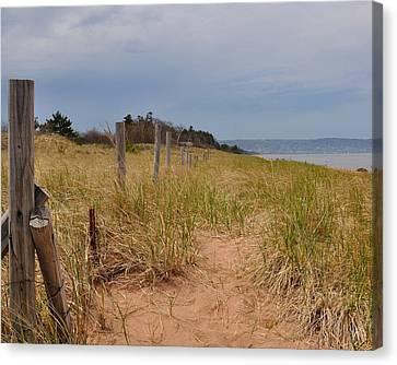 Park Point Minnesota Beach Entrance Canvas Print by Todd Soderstrom