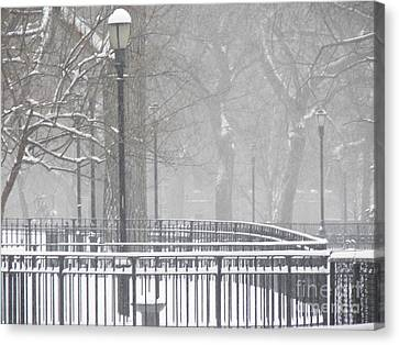 Park Snow Canvas Print by James Dolan