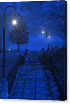 Park Stairs Canvas Print by Michael Rucker