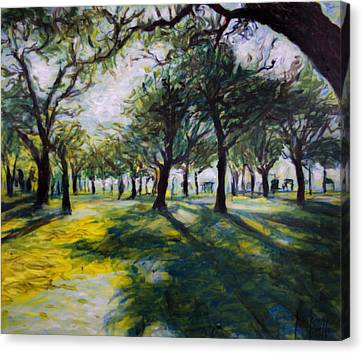 Park Trees Canvas Print by Ron Richard Baviello