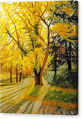 Parkside At Maple Canvas Print by David Bottini