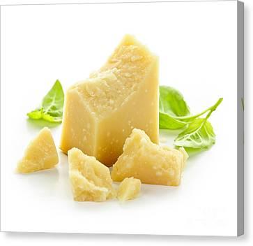 Parmesan Cheese Canvas Print by Elena Elisseeva