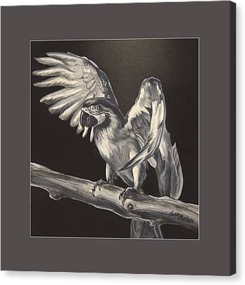 Macaw Canvas Print - Parrot On Branch by Lisa Nomikos