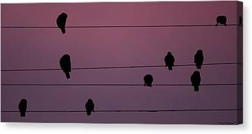 Parrots Online Canvas Print
