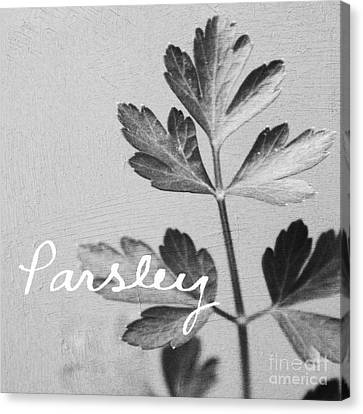 Parsley Canvas Print by Linda Woods