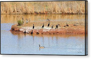 Geese Canvas Print - Party Island by Betty LaRue