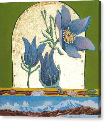 Pasque Flower In The Spring Canvas Print by Amy Reisland-Speer