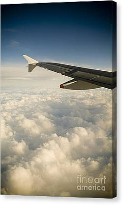 Passenger View Canvas Print by Tim Hester