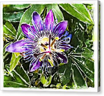 Passion Fruit Canvas Print - Passion Fruit Flower by Nato  Gomes