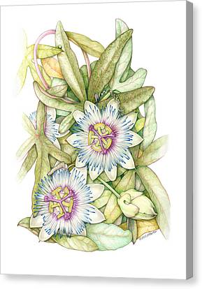 Passionflower Canvas Print by Elizabeth Martin