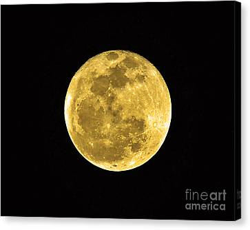 Passover Full Moon Canvas Print by Al Powell Photography USA