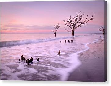 Past And Present Canvas Print by Tommy  White