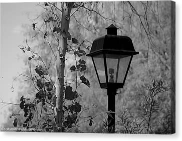 Canvas Print featuring the photograph Past N Present by Elaine Malott