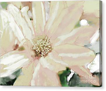 Pastel Daisy Photoart Canvas Print